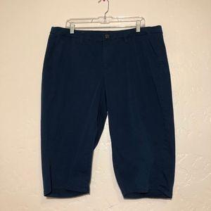Lane Bryant shorts, size 20